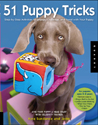 The Dog Tricks and Training Workbook by Kyra Sundance and Chalcy